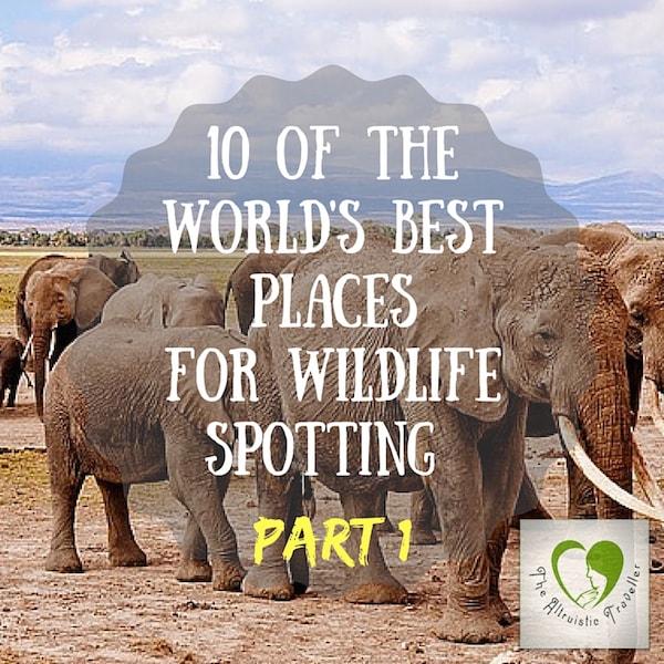 Best Wildlife Spots Part 1