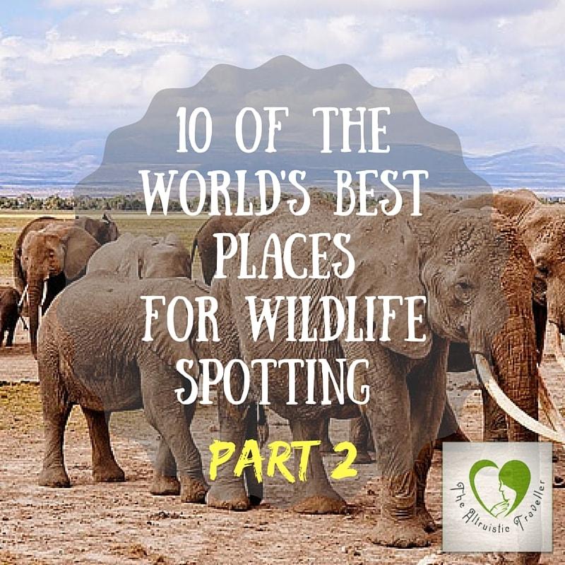 Best Wildlife Spots Part 2