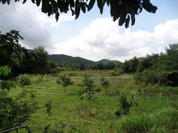 OM Farm