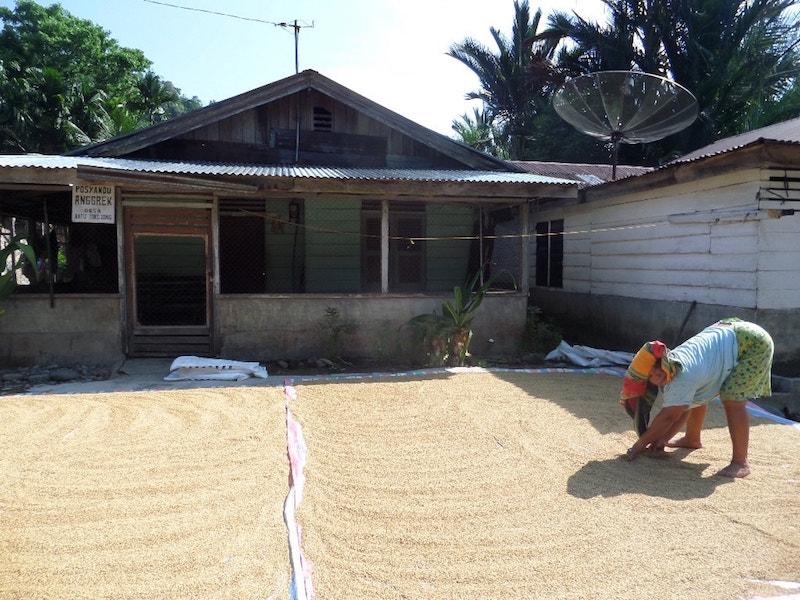Visiting_villages_Sumatra
