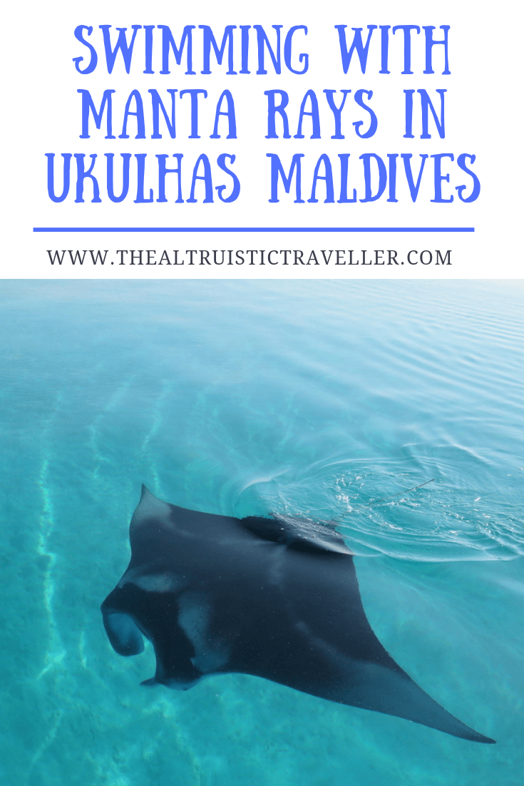 SWIMMING WITH MANTA RAYS IN UKULHAS, MALDIVES