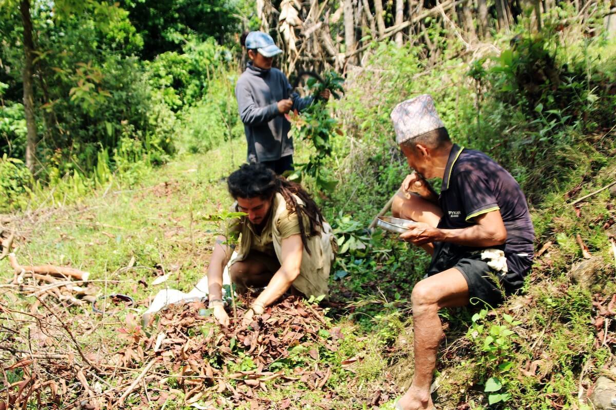 agriculture-program