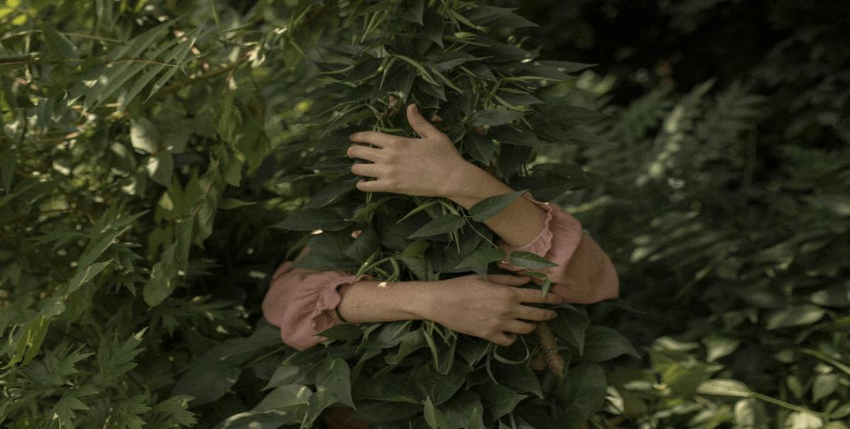 armsandtreee