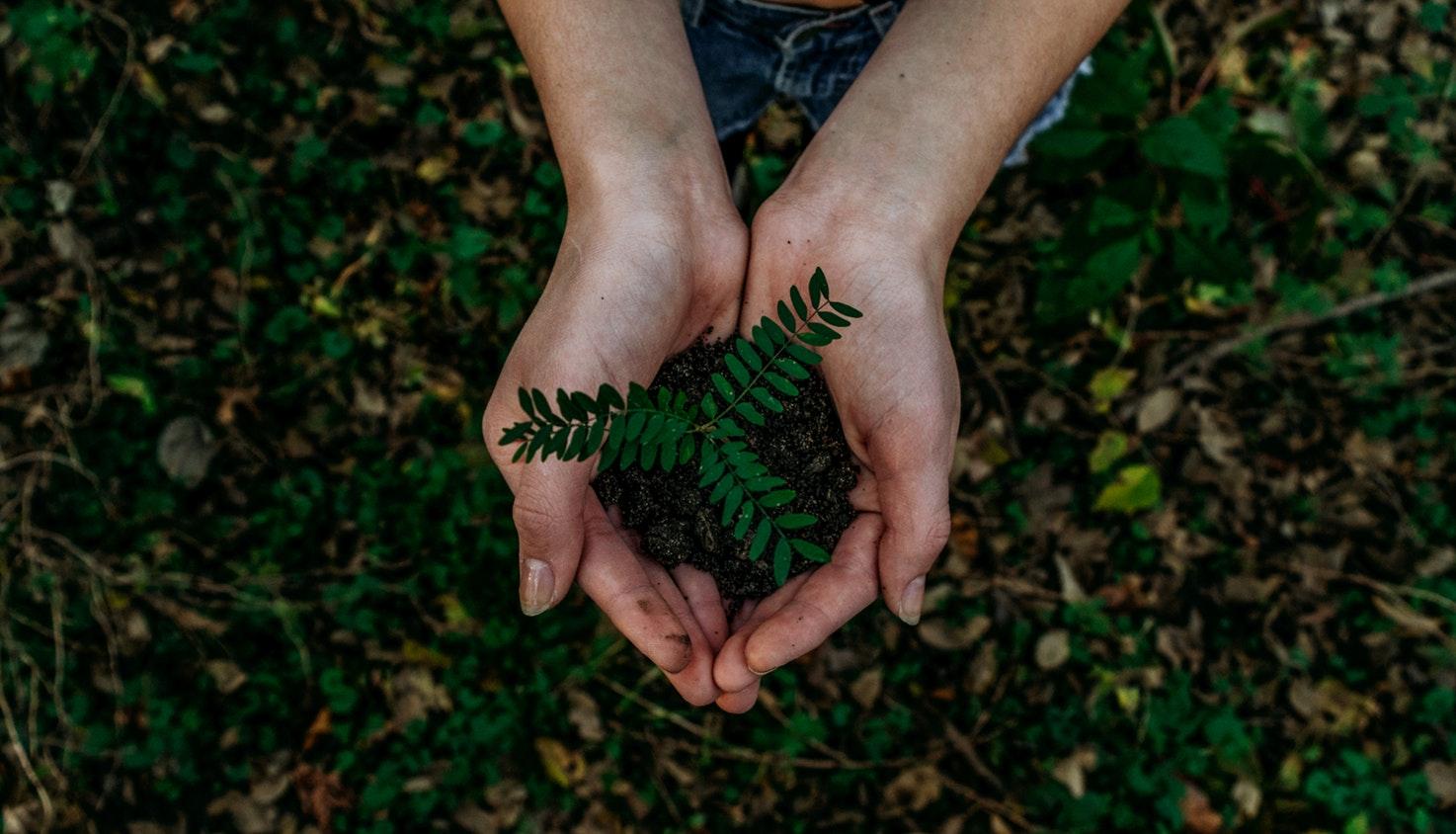 talk-sustainability