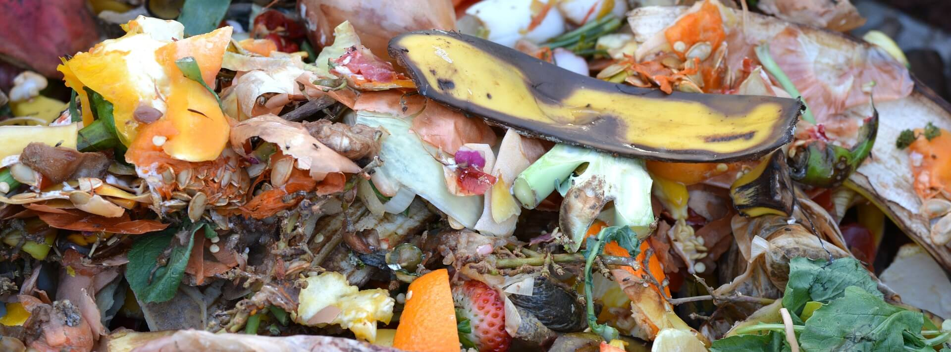 compost-hotels-food-waste